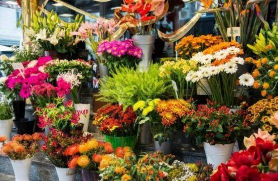 למכירה עסק רווחי לממכר זרי וסידורי פרחים